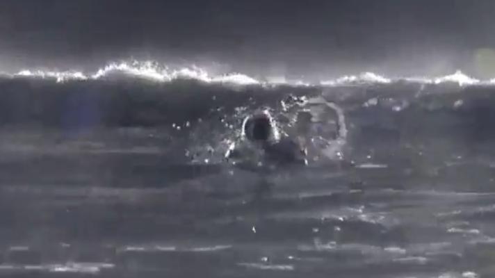 桑名晴子 – Moonlight Surfer [石川セリ]